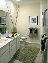Model Home Bathroom 4167 cobbler-villa-cobblestone